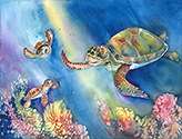 Sea Turtles 6